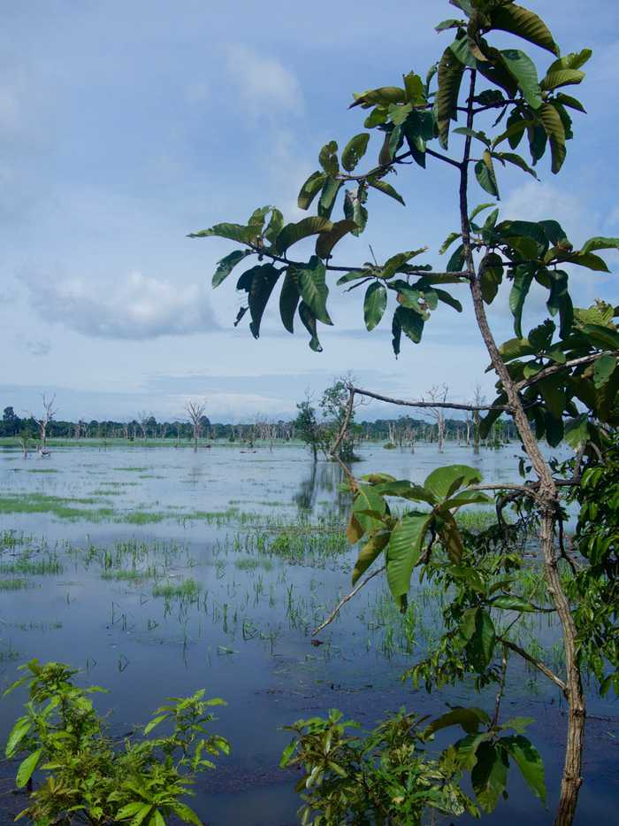 Lake surrounding Neak Pean